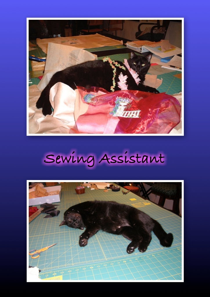 Sewing Assist Chunk